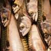A hal előkészítése házilag