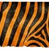 Tigris jelmez készítése házilag