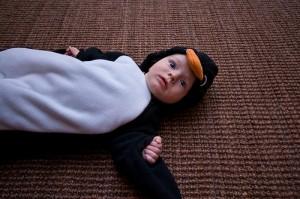 Pingvin jelmez készítése házilag